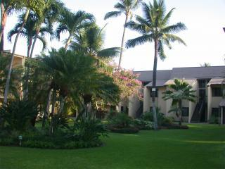 2016 ONLY $99/NT!-Great Maui Condo,Steps to Beach, Kihei