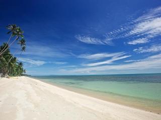 LOTUS BEACH VILLA - 5-br Luxury Right on the Beach!