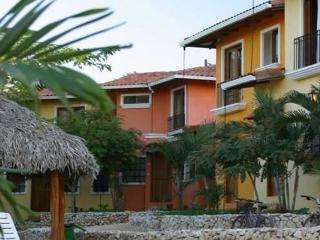 Lovely condo in quiet residential area- near town and beach, pool, cable, a/c, Tamarindo