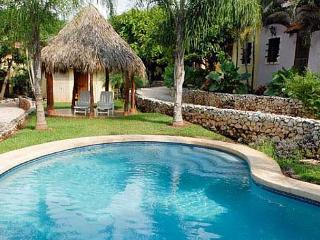Affordable 2BR condo with internet and A/C. Easy walk to the beach, Tamarindo