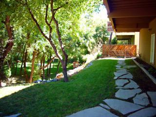 Enchanted Forest Estate, Property, Back Exterior