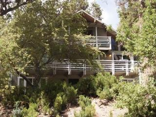 Absolute Comfort Chalet, Big Bear Lake