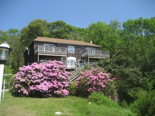 Panoramic ocean views, steps to beach & bike path, Falmouth
