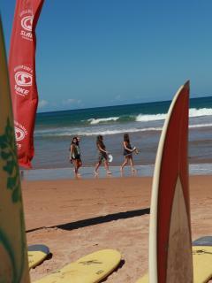 BEACHES: Tourists at the beach