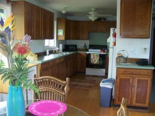 Kapaa  Kauai downtown vacation rental house Hale