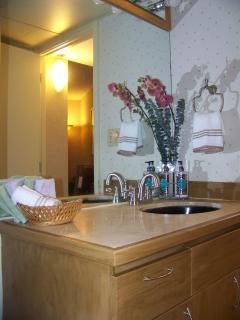 Exec Centre bathroom view 1