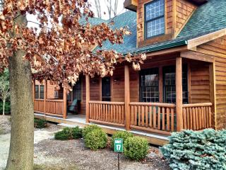 Treat Yo'self! Beautiful Cabin at Kingfisher Cove!, Saugatuck