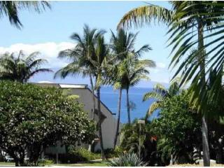 Maui Paradise Waves of Aloha 1 BR Vacation Condo at Maui Kamaole!