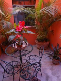 Private patio, lower casita