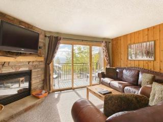 Scandinavian Lodge and Condominiums - SL103, Steamboat Springs