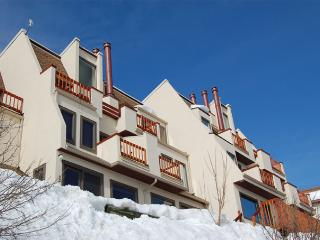 Storm Watch Condominiums - SW104, Steamboat Springs