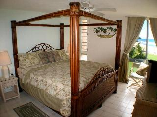 Master Bedroom with exotic King bed and en-suite bath