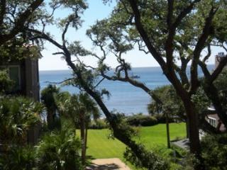 Beautiful large condo - Great Ocean View, St. Simons Island