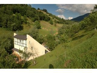 '1OF EUROPE'S MOST FANTASTIC SELF-CATERING VILLAS', Bran