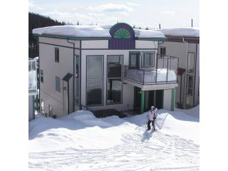 Ski-in/Ski-out - 4bdr/3bath - Silver Star Resort