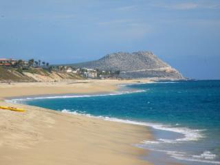 La Laguna is an amazing area!