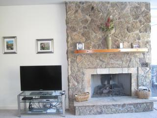 HD TV, digital cable, WIFI, Gas Fire Place