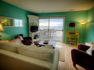 Oceanfront Livingroom with Ikea slipcovered sleeper sofa, TV and post card writing desk.