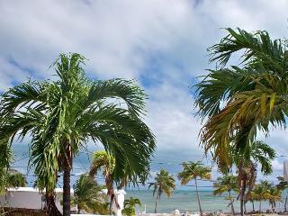 30 night minimum stay requirement.  Manatee Manor, Key West