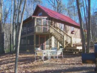 Secluded/View/Huge Deck & Firepit/Hot Tub/Pet Fdly, Blue Ridge