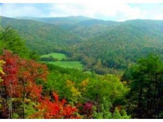 Breathtaking Valley and Mountain View of Rich Mountain and National Forest lands!!