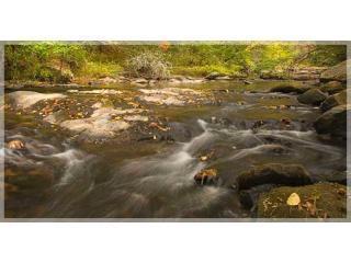 Cours d'eau au pied de nos montagnes sur Benton MacKaye Trail