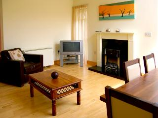 5 CASTLE QUAY, family friendly, with a garden in Kinsale, County Cork, Ref 2607