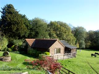 HEALER'S COTTAGE, pet friendly, character holiday cottage, with a garden in, Hoarwithy