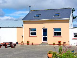 OCEAN VIEW, pet friendly, country holiday cottage, with a garden in Skibbereen, County Cork, Ref 2519