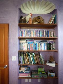 Ample shelves with books, games, and limited DVD library.