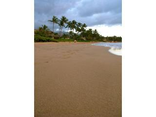 Charley Young Beach a three minute walk! Nice soft sand under your feet, ahh paradise!