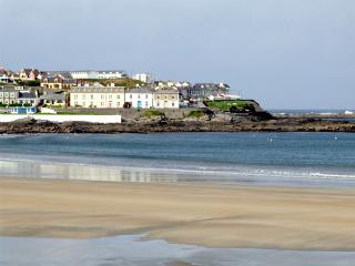 OCEAN VIEW, pet friendly, country holiday cottage, with a garden in Doonbeg, County Clare, Ref 2547