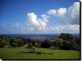 ocean view and grounds