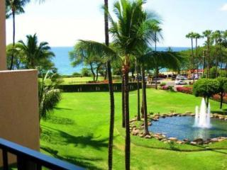 Ocean view from the lanai