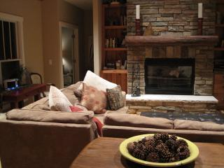 On a cool night, the fireplace is a natural focal point for sharing stories or a long nap.