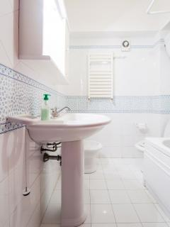 shower room with wide shower, bidet + WC
