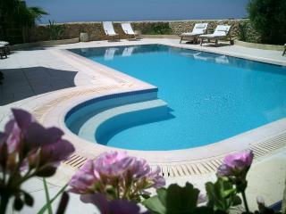 Tal-Bjar  Marvelous villa/fhouse with private pool