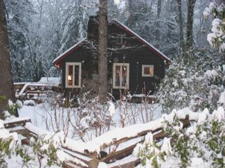 Creekstone Cabin - NC Mountain Cabin Sleeps 4, Asheville