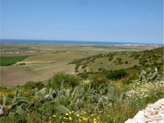 A quiet location with fantastic  views, near beach, Vejer de la Frontera