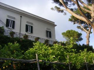 The main Villa