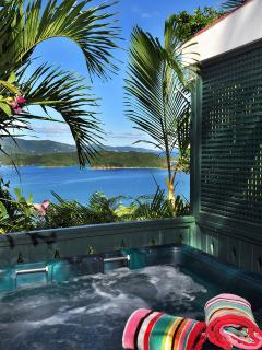 Hot tub with great views towads hurricane hoke and Coral harbor
