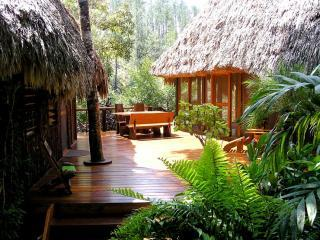 Private riverfront/ jungle villa, kitchen, hot tub, Mountain Pine Ridge Reserve