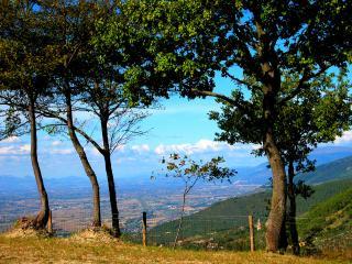 Vista Del Mondo:Country House, Spoleto - 7 miles