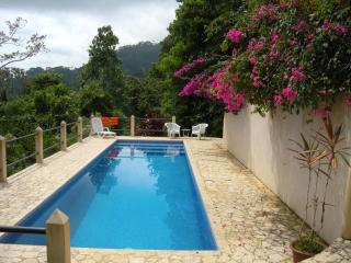 Casa Toucan: Secluded Jungle Setting with Ocean View & 40 foot  Pool, Uvita