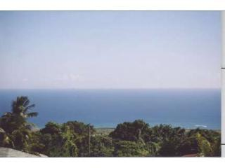 Ghill-View-of-Ocean-from-the-Back-Porch-Clear-Day