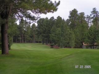 pinetop driving range