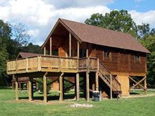 Winter Mountain View, River frontage & a Log cabin with a hot tub! near Luray VA