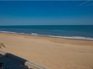 A-207 Endless Summer, Virginia Beach