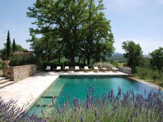 Family friendly Tuscan Villa on Wine-Producing Estate - Villa Siena