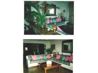 PV 210 CONDO LIVING ROOM WITH BIRD OF PARADISE